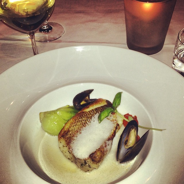 North 44 Pan Seared Rock Fish with blistering tomatoes, mussels, coconut milk, reduced broth and basil shoots. Photo by @katielynn17